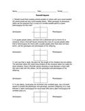 Genetics: Introduction to Monohybrid Cross