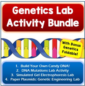 Genetics Lab Activity Bundle...With Bonus Genetics Foldable!