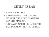 Genetics Lab Powerpoint Presentation