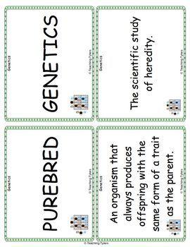 Genetics Vocabulary Cards
