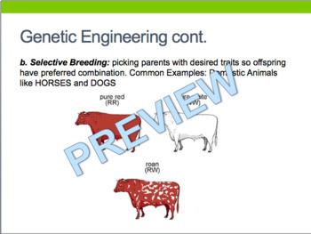 Genetics Living Environment Regents Review- One Page Wonder + Powerpoint