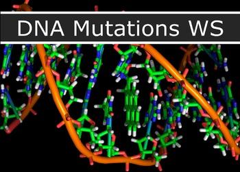 Genetics - Mutation Practice WS