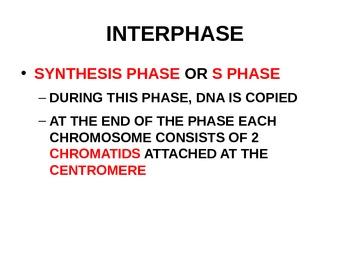 Genetics Notes Power Point