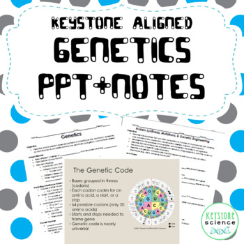 Genetics PPT & Notes Punnett Squares Protein Synthesis Biology Keystone Aligned