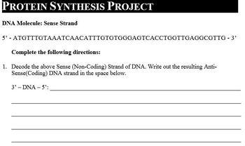 Genetics Part E - What do Genes do?