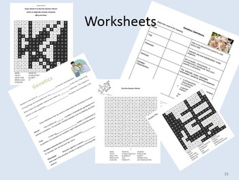 Genetics PowerPoint. Intro to Genetics & Word Definitions includes 5 worksheets