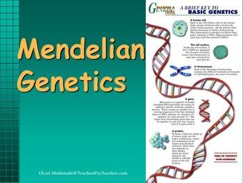 Genetics: Introduction to Genetics PowerPoint Presentation