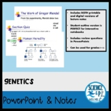 Genetics (PowerPoints, PDF's, and Google Slides)