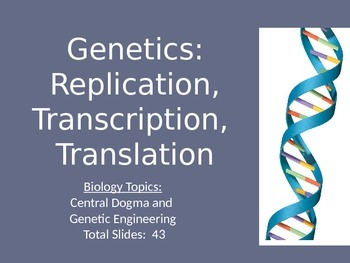Genetics:  Replication, Transcription, Translation PowerPoint