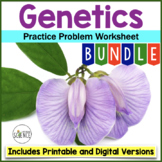Genetics Practice Problem Worksheet Bundle