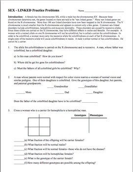Genetics Practice Problem Worksheet Sex Linked Genes Sex Linkage