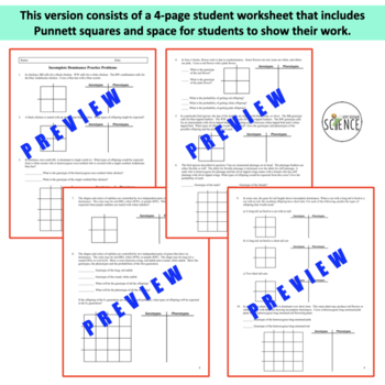 Genetics Practice Problems  by Amy Brown Science  Teachers Pay