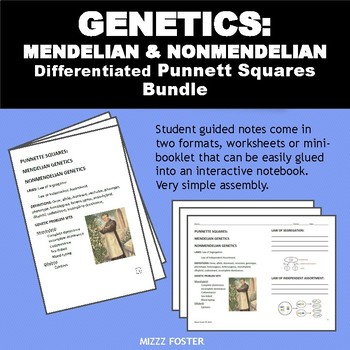 Genetics: Punnett Squares, Mendel, Non-Mendelian Student Worksheets with KEY