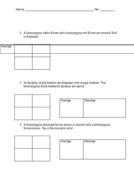 Genetics - Punnett square worksheet or test