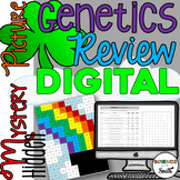 Genetics Review Digital Hidden Mystery Picture   Distance
