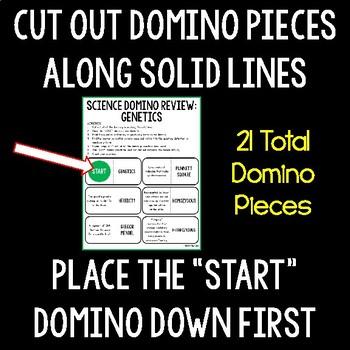 Genetics Domino Review