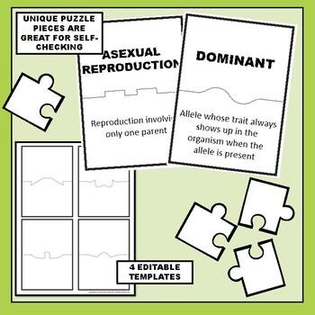 Genetics Science Vocabulary Puzzles