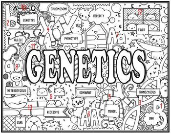 Genetics Seek and Find Science Doodle Page