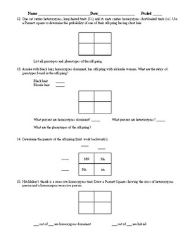 Genetics Study Guide/Worksheet