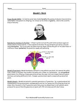 Genetics: The Work of Gregor Mendel Notes