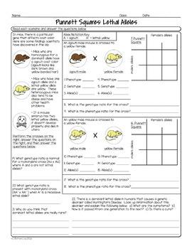 Genetics Unit Homework Pages