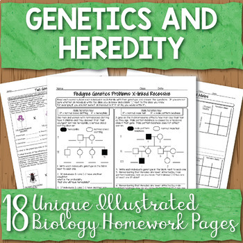 Genetics Unit Homework Worksheet Bundle