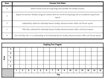Genetics Unit Rubric
