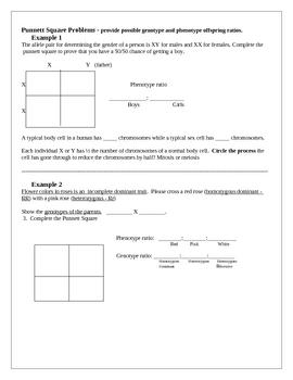 Genetics Unit Study Guide - Learning Goals