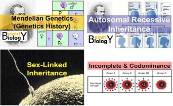 Genetics Unit (from start to finish)