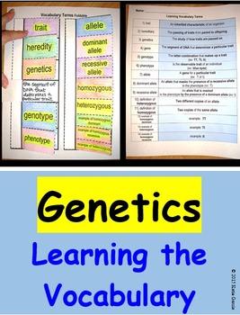 Genetics Vocabulary