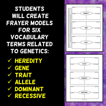 Genetics Vocabulary Foldable - Set 1 - Frayer Model Format