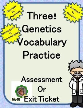 Genetics Vocabulary Practice (3 Versions)