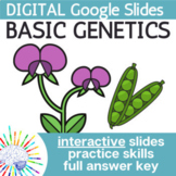Genetics Vocabulary & Punnett Squares Interactive Google S