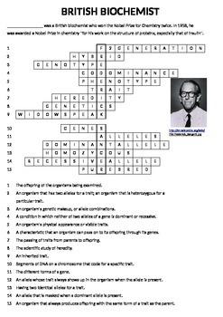 Genetics Vocabulary Puzzle