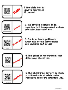 Genetics Vocabulary QR Code Dominoes Activity