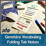 Genetics Vocabulary Review Foldable Notes