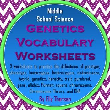 Genetics Vocabulary Worksheets & Teaching Resources | TpT