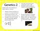 Genetics Bell Ringer or Exit Ticket Digital Task Card Set