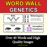 Genetics Word Wall