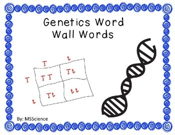 Genetics Word Wall Words
