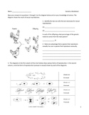 Middle School Biology Genetics Worksheet - Punnett Squares and More