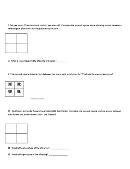 Genetics Worksheet- Traits, Punnett Squares, Meiosis & Mitosis