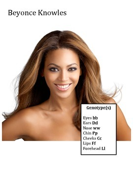 Genetics and Heredity Exploration: Celebrity Babies and Punnett Squares!