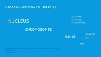 Genetics and Heredity PowerPoint