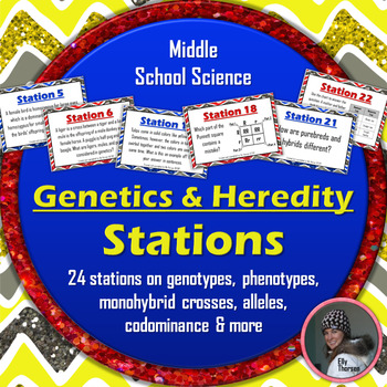 Genetics and Heredity Stations Activity