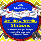 Genetics and Heredity Stations Activity