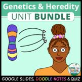 Genetics and Heredity Unit - Doodle Notes and Digital INB BUNDLE