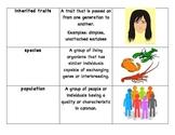 Genetics and Heredity Vocabulary Cards