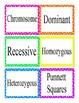 Genetics and Heredity Word Wall