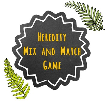 Heredity Mix and Match Vocabulary Game